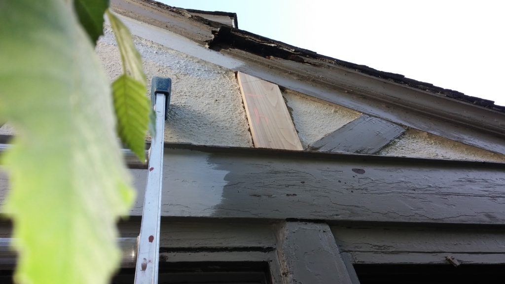 Close-Up of Rotted Wood & Replacement