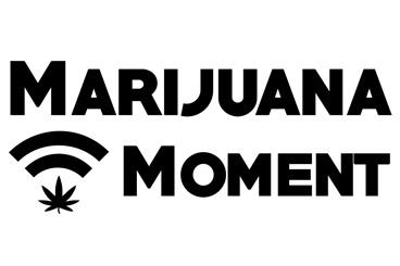 Pennsylvania Senators Discuss Bill To Provide DUI Protections For Medical Marijuana Patients