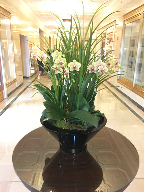 Website Blooming Orchid Arrangement With Green Grasses And Accents At Base Copy