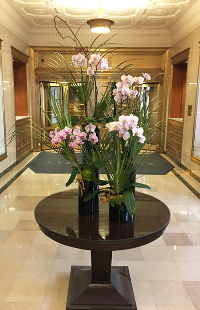 Website Blooming Orchid Arrangement With Kiwi Vine Succulents Decorative Wood And Accents In Various Tall Black Glass Cylinders With Cut Palm Fronds Copy