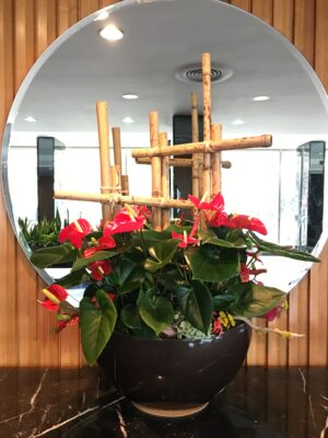 Anthurium Arrangement with bamboo and accents at base