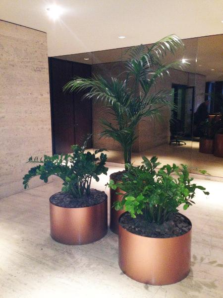 Plant Leasing