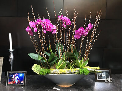 Website-Blooming-Orchid-Arrangement-Large-pussy-willow-and-log-with-lichen-purple-orchids