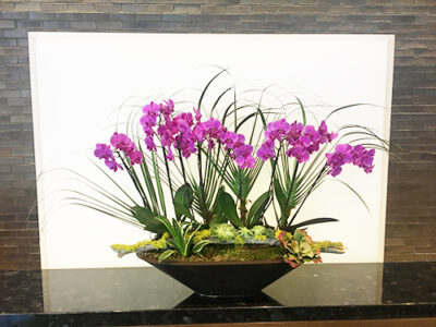 Website-Blooming-Orchid-Arrangement-with-cut-palms-fronds-moss-covered-log-at-base-with-succulents