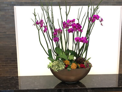 Website-Blooming-Orchid-Centerpiece-Spring-Summer-Green-Mitsumata-Branches