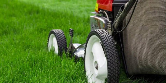 grassmow