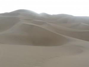 秘鲁,气候,海拔,季节