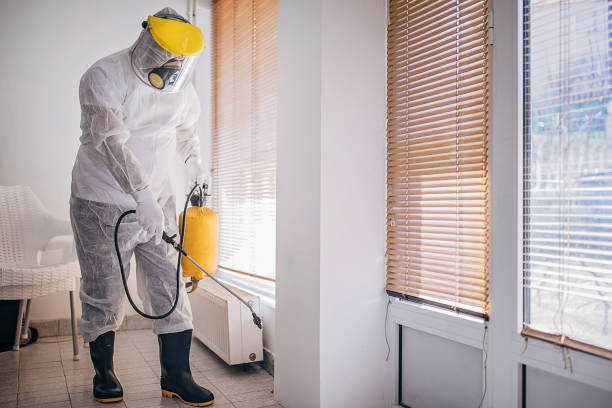 COVID cleaning service - disinfecting and spraying every room in the building
