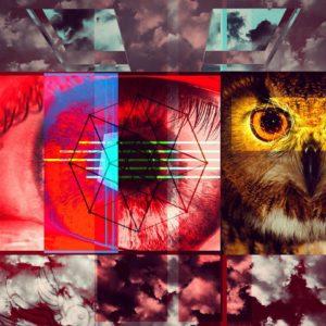 Owl C U - Adam Sinai