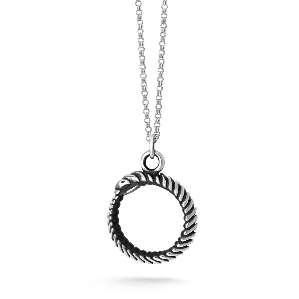 Ether11 Small Oroboros Snake Pendant on Rolo Chain