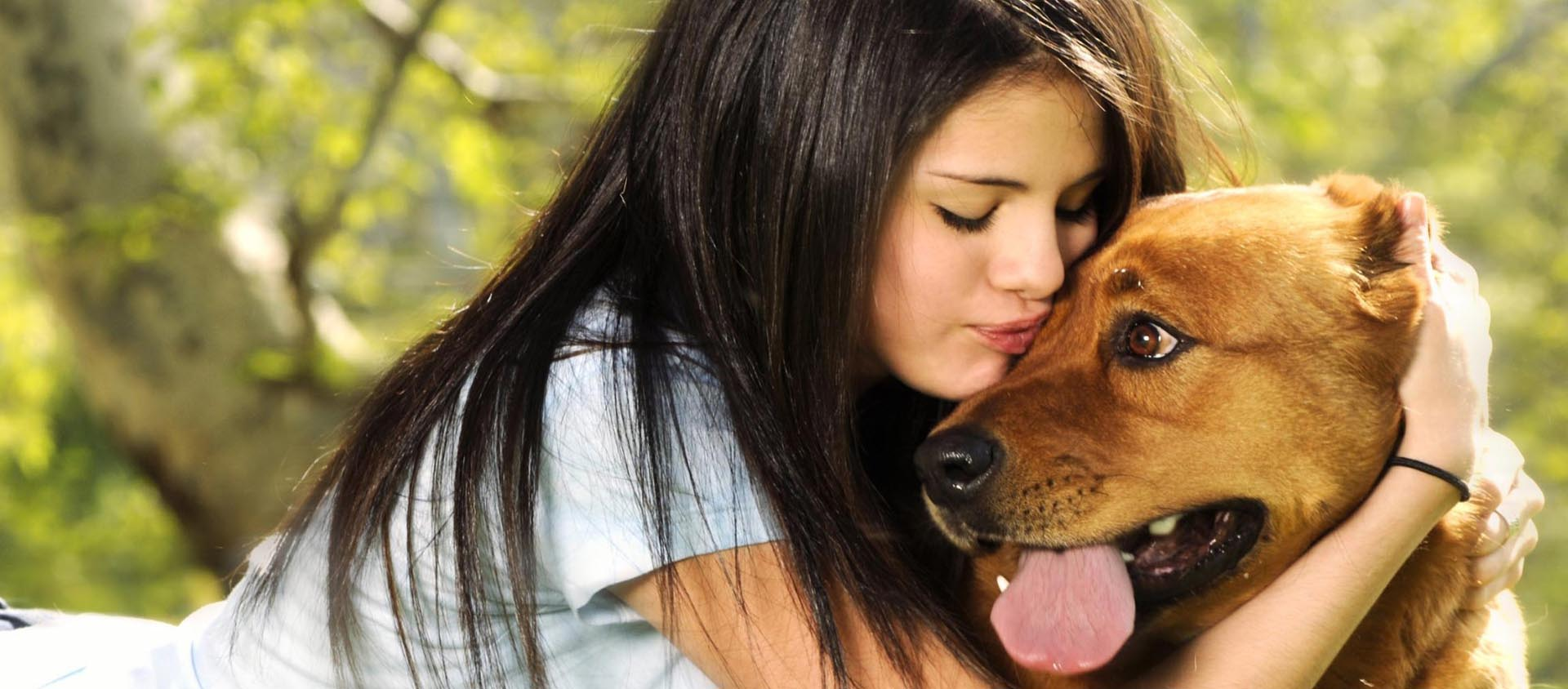 Celebrities and Rescue Dogs