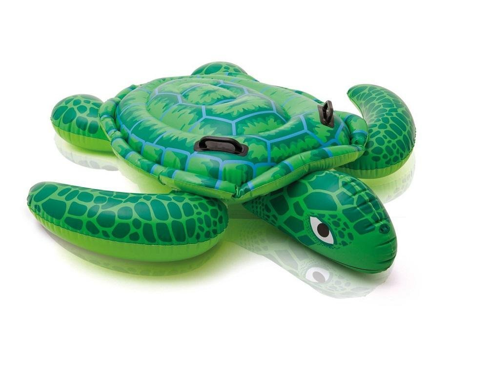 turtle floatie