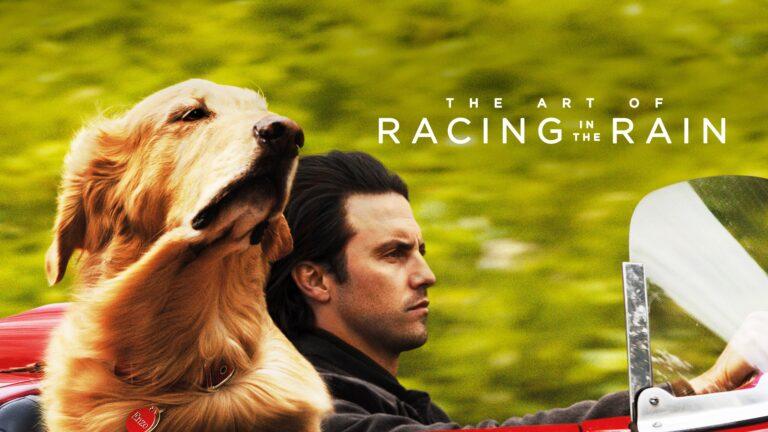 The Art of Racing in the Rain [Reseña]