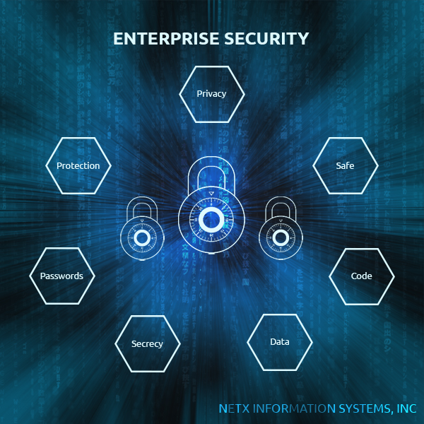 Image for Enterprise Security from Net X Information Systems, Inc