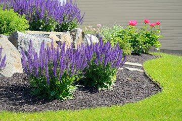 mulching-flowers