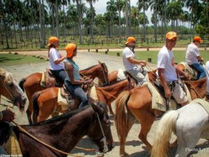 Punta Cana Beach Horse Back Ride