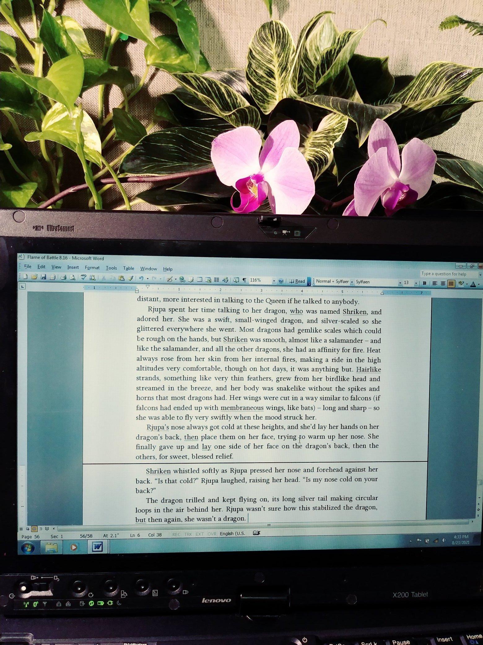my computer screen with Viking novel stuff