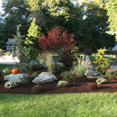 Residential planting