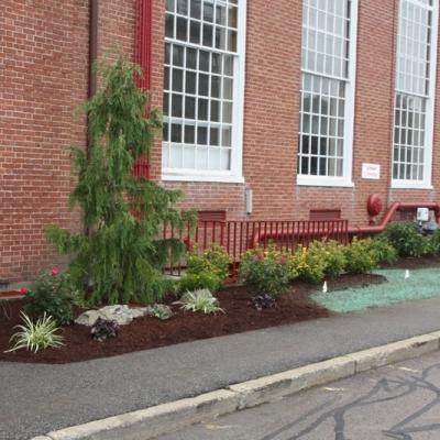 East Bridgewater school planting