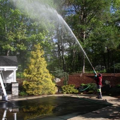 Tree Spraying