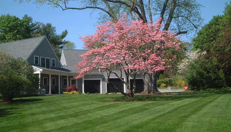 East Bridgewater MA Landscape Lawn Care