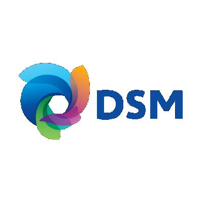 DSM Logo