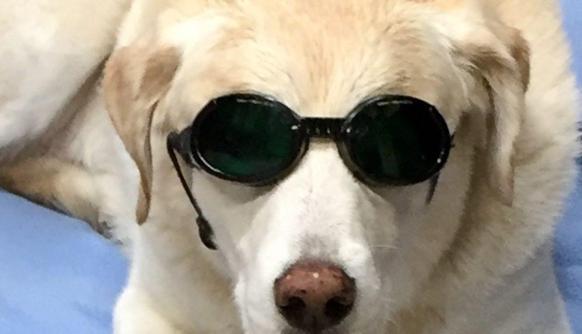 ben-in-shades