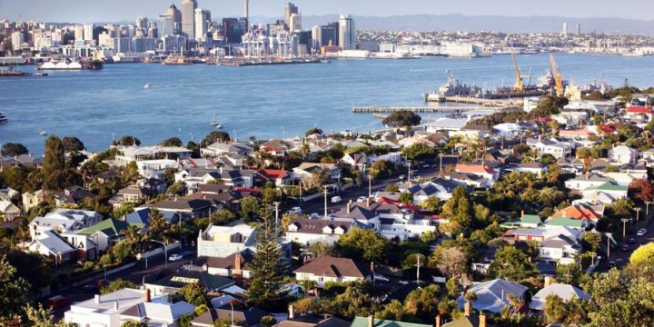 How to solve Auckland's housing crisis: New report out
