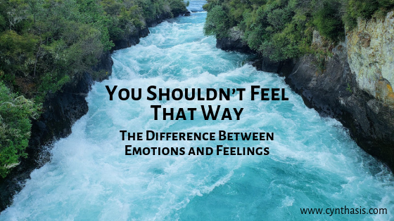 """""""You Shouldn't Feel That Way."""" The Difference Between Emotions and Feelings"""