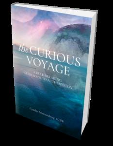 cynthia schwartzberg the curious voyage