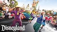 Disneyland Resort Theme Parks