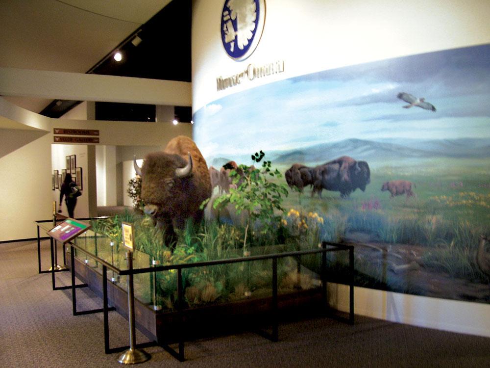 durhammuseum1