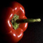 Red bell pepper, Guy Sagi, Raeford, Hoke County, North Carolina