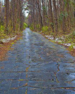 Lumber River, Road near Lumber River, Raeford, Hoke County, North Carolina, Wagram, chalk cliffs, Guy Sagi