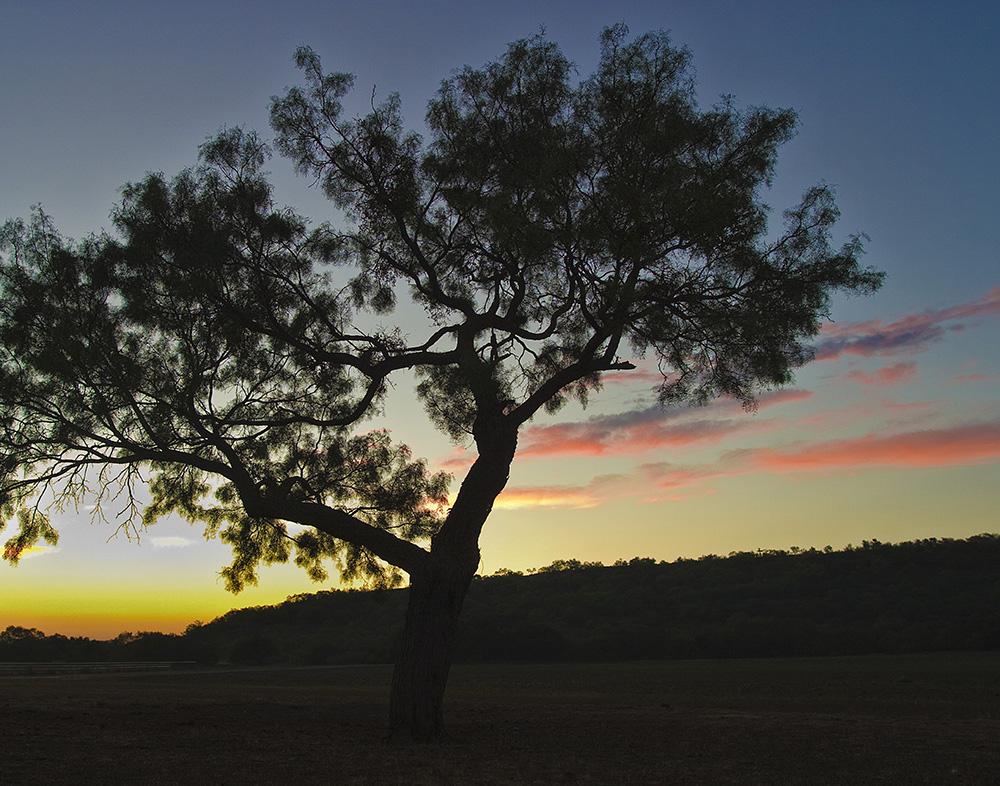 Texas sunrise, Guy Sagi