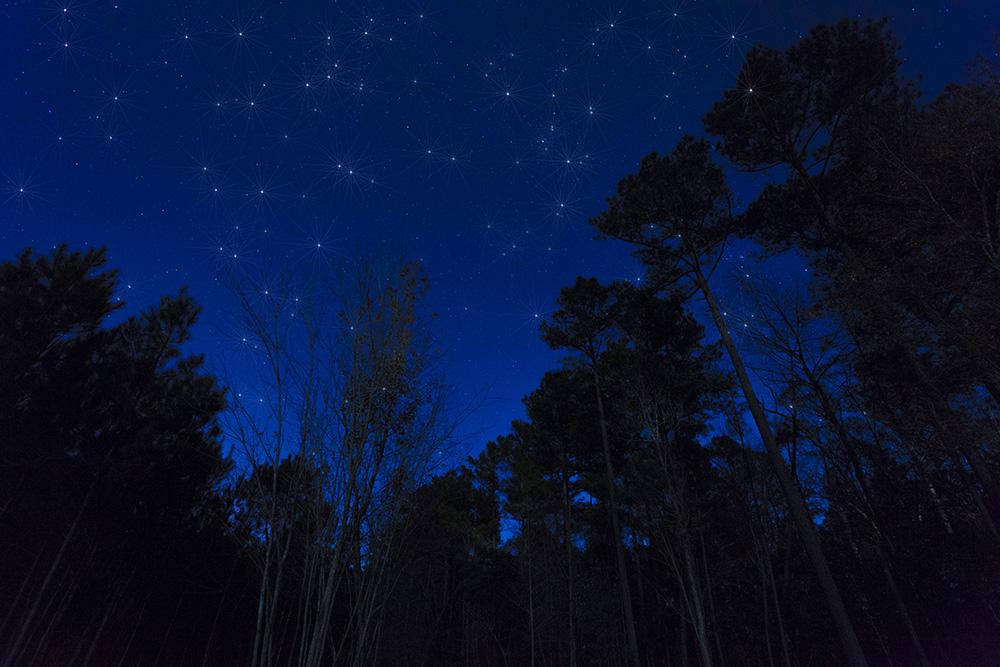 Raeford at night, Guy Sagi