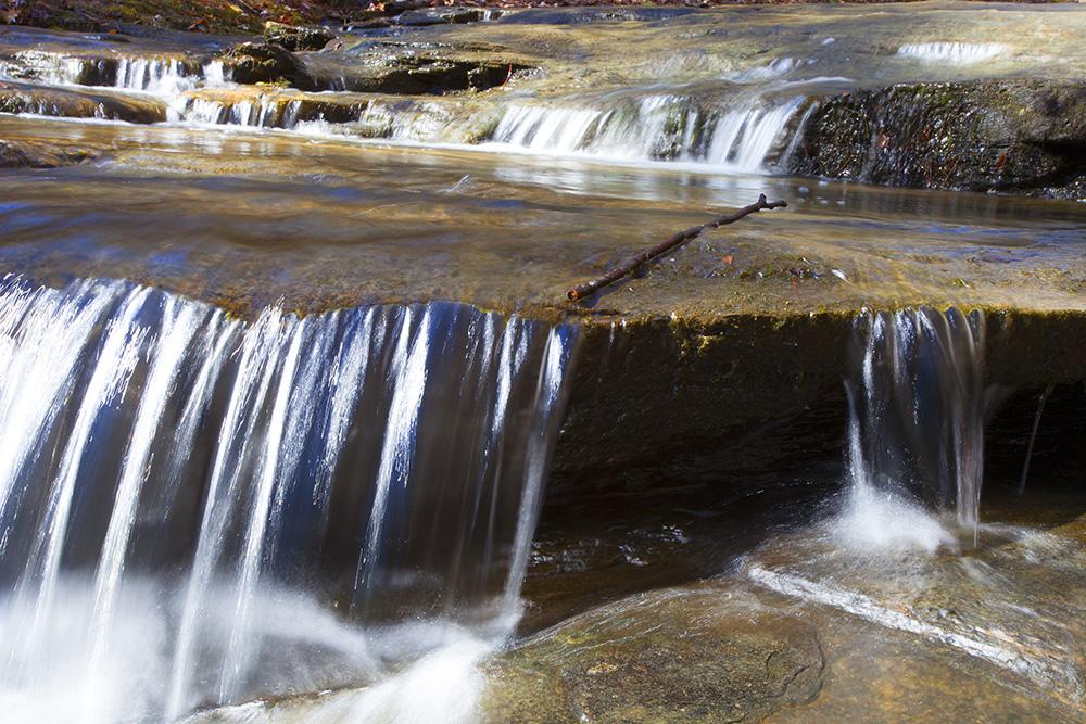 Raven Rock State Park, Guy Sagi
