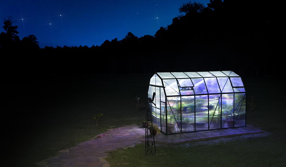 Grandio Greenhouse at night, Guy Sagi Photography, greenhouse at night, Raeford, North Carolina