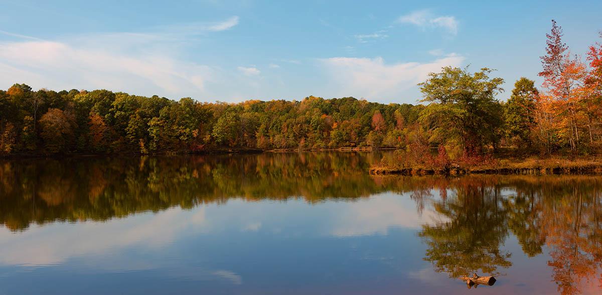 Autumn shoreline at Falls Lake North Carolina