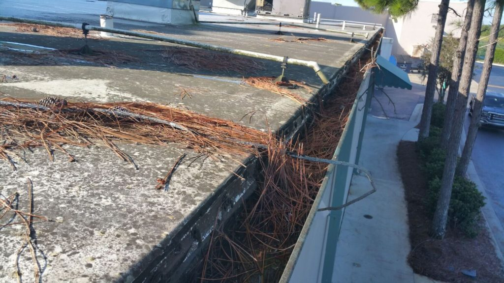 Don't damage a roof with loose debris on your roof or in your gutters