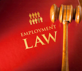 Employment Law Bucks County Family Law