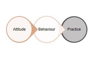 attitude behaviour practice 1