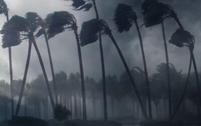Preparing to Weather the Storm: Insurance Tips for Hurricane Season