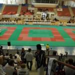 2009 World Kata Championships Gallery