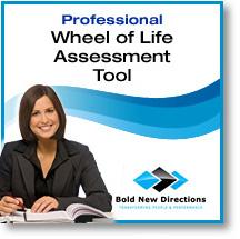 Professional Wheel of Life Assessment