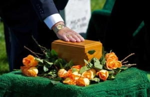 Ecological Costs of Cremations