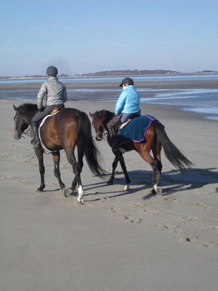 beachride2