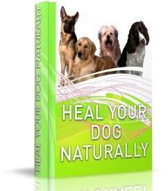 Heal Your Dog Naturally Review – healyourdognaturally.com a Scam?