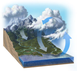 Illustration showing the Earth's water cycle starting with precipitation in the mountains, washing nutrients downstream, ending up in the seas and evaporating back up. This cycle leads to trace mineral deficiency in humans because minerals are constantly washing into the seas and not available in food through soil
