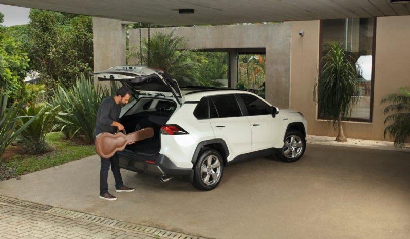 Nueva RAV4 Hibrida lleno